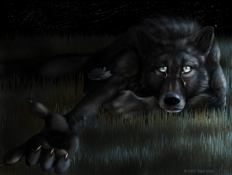 Sad Wolf Cry