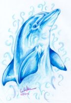 dolphin1_1.jpg by Caroline Muchmore (Little Serval)