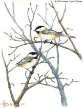 chickadees.jpg by Heather Luterman (Kyoht)