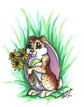 flowerbunny.jpg by Laura Westrate (Cricket)