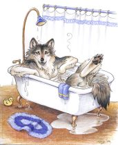 wolfbath.jpg by Megan Giles (SpaceCat)