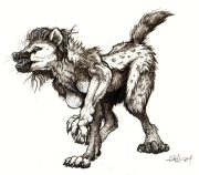 spotted_hyena2.jpg by Cara Mitten
