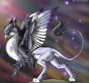 aurora-gryphon.jpg by Traci Vermeesch (Ulario)