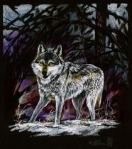 a20040126wolf01lgcr.jpg by Kimberly LeCrone (The Regal Tigress, Dreamspirit)