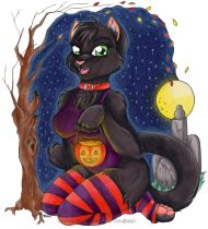 halloweencatlight.jpg by Sophie Alesi (Ecco)