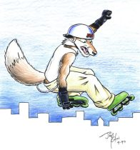 skatefox.jpg by Jimmy Chin (Kohii, Bunnell, Yippee Coyote)