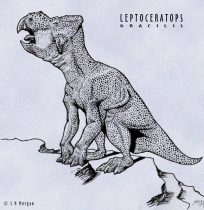 leptocer.jpg by Susan Morgan (DeNonikus, Shoes, Chasmosaur)