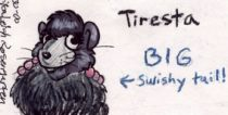 tiresba.jpg by Erika Leigh Rosengarten (Chilly Mouse Mousie)