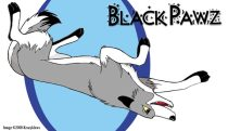 blackie.jpg by Audrey Walker (KrazyKlaws, WolfDreamer)