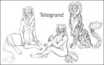 telesmall.jpg by Amanda Adams (Lightbulby, Apoidea)