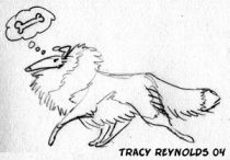 trcollie1.jpg by Tracy Reynolds (Calicougar)