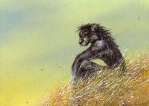 fieldsofgold.jpg by Tess Garman (Kenket)