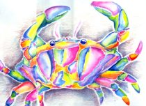 crabby.jpg by Ainsley Seago