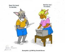 pollvote.jpg by Donald Brown (oldrabbit)