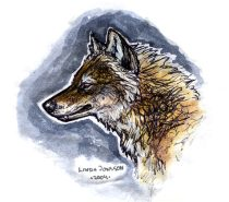 goldenwolf_color_sketch.jpg by Linda Jonsson (Tae)