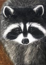 raccoon.jpg by Odis Holcomb (Ryngs, The March Hare)