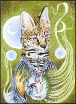 ariel-moon.jpg by Caroline Muchmore (Little Serval)