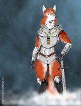 foxkni.jpg by Jason Williams (Ocicat)