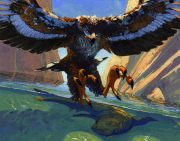 seaeagle.jpg by Anthony S. Waters (Fireant)