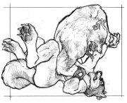 ragecardud.jpg by Anthony S. Waters (Fireant)