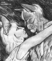 catlove.jpg by Jason Williams (Ocicat)