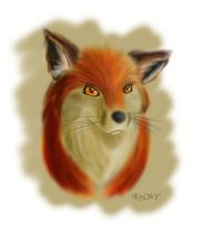 k-foxhead.jpg by Paul Mason (Kooky)