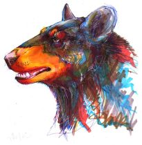 blackbear.jpg by Allison Reed (javachickn, mudshark)