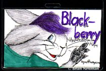 bbbadge.jpg by Richard de Wylfin (Snoozeball)