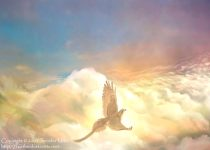aboveclouds.jpg by Jennifer Miller (Nambroth)