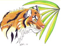 tigerpalm.jpg by Audrey Walker (KrazyKlaws, WolfDreamer)
