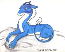 bludrgn.jpg by Audrey Walker (KrazyKlaws, WolfDreamer)
