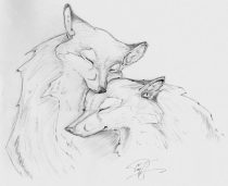 amadhi_foxes.jpg by Timothy Albee (Amadhi)