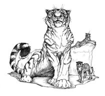 tigerlord_small.jpg by Cara Mitten